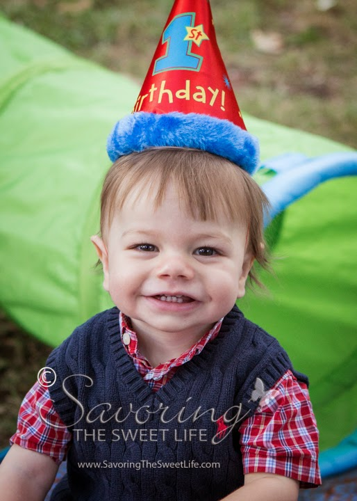 Andrew Is One Year Old Happy 1st Birthday Portraits And Party Event Photography San Diego Poway Park