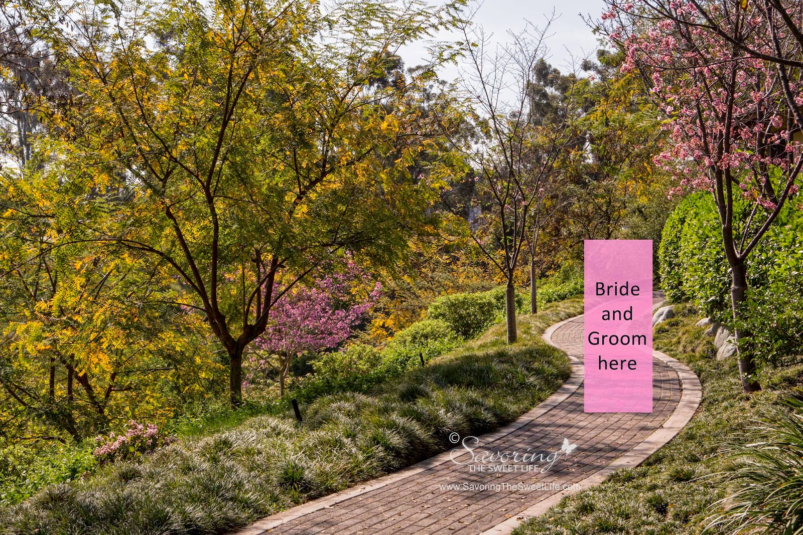 Balboa Park\'s Japanese Friendship Garden Wedding Idea: San Diego ...