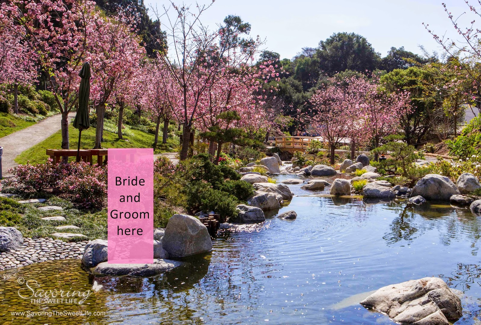 Balboa Park S Japanese Friendship Garden Wedding Idea San Diego Wedding And Engagement
